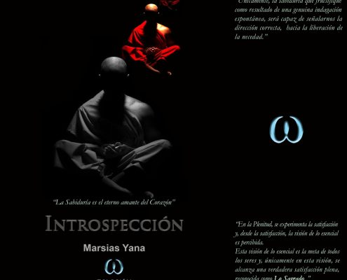 introspeccion 1 495x400 - Introspección