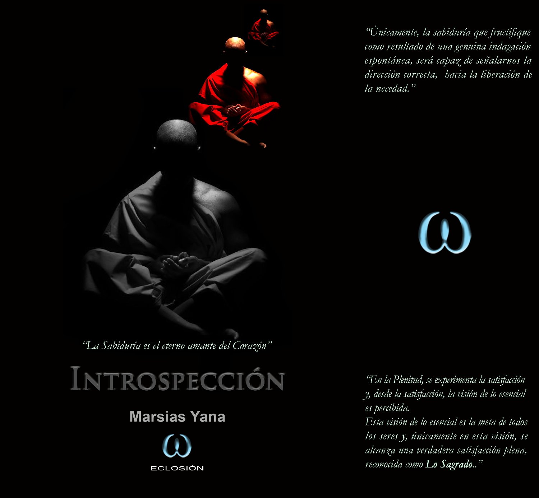 introspeccion 1 - Introspección